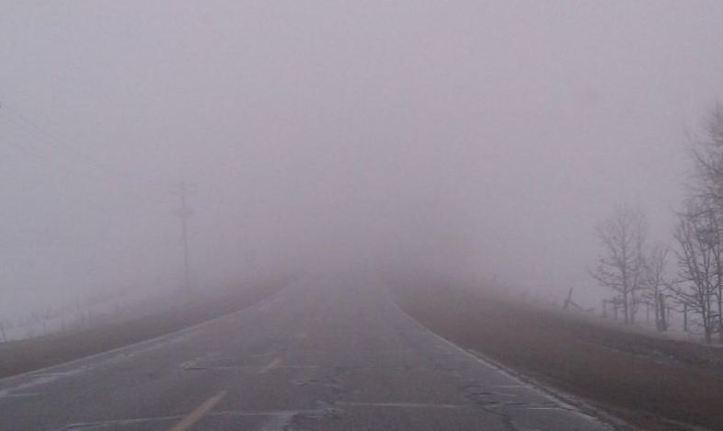 mist and fog.JPG